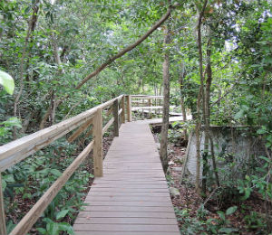 The Lucayan National Park
