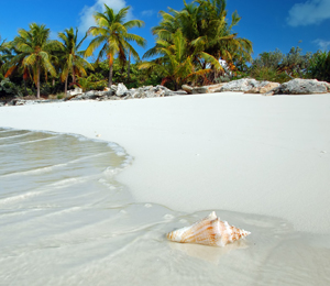 Nassau Beach Tours